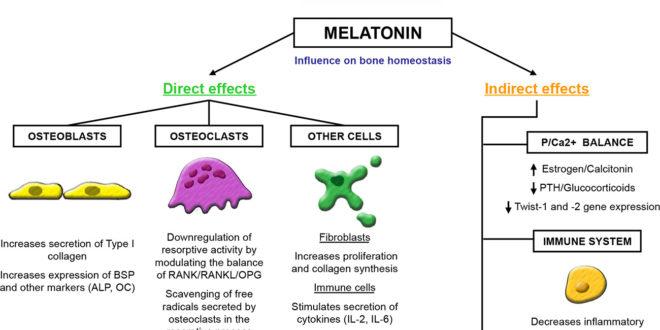 the-role-of-melatonin-in-periodontal1