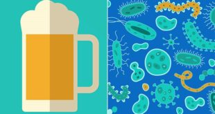 Drinking-Alcohol-Increases-Mouth-Bacteria-722x406