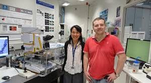 Researchers discover new way to predict caries development