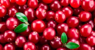 cran berry