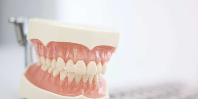 Is better oral health knowledge the key to healthier gums2