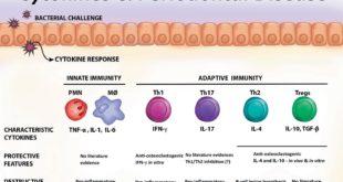 Immunomodulatory Factors Gene Polymorphisms in Chronic Periodontitis