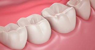 Researchers likely found way to grow new dental tissue for patients