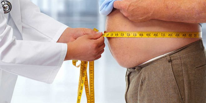 Researchers link obesity to dietary changes from decades ago
